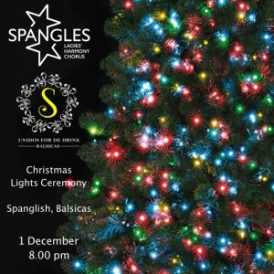 Christmas Lights Ceremony @ Bar Spanglish